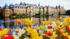 Cần điều kiện gì để được nhập tịch Hà Lan