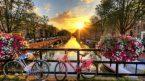Thủ tục xin visa thăm thân tại Hà Lan